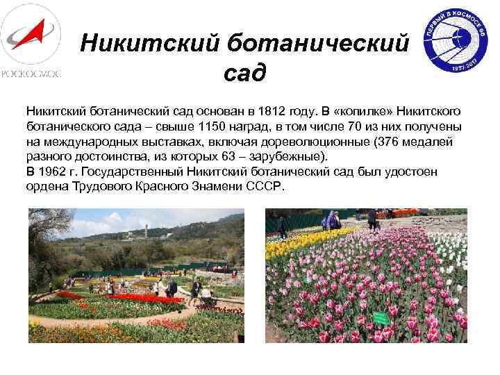Никитский ботанический сад основан в 1812 году. В «копилке» Никитского ботанического сада – свыше