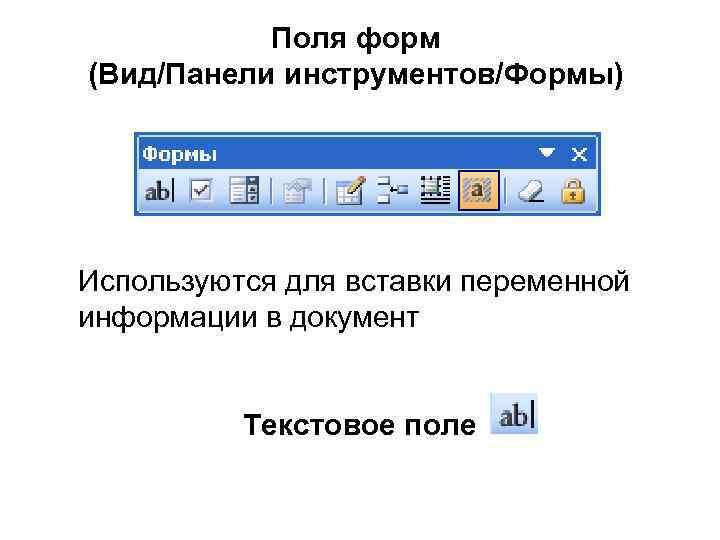 Поля форм (Вид/Панели инструментов/Формы) Используются для вставки переменной информации в документ Текстовое поле