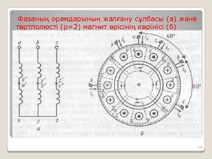 Фазаның орамдарының жалғану сұлбасы (а) және төртполюсті (р=2) магнит өрісінің көрінісі (б) 19