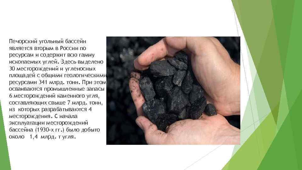Печорский угольный бассейн является вторым в России по ресурсам и содержит всю гамму ископаемых