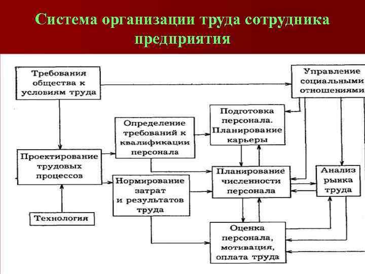 Система организации труда сотрудника предприятия