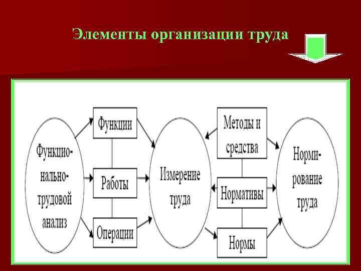 Элементы организации труда