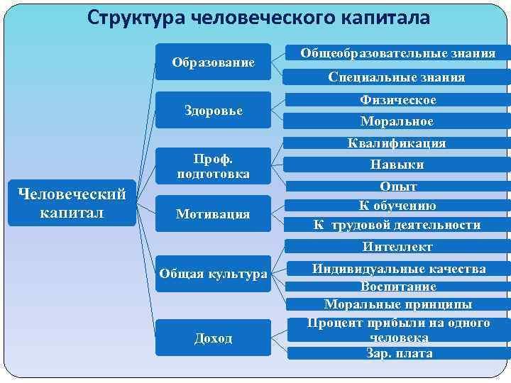 Структура человеческого капитала Образование Здоровье Проф. подготовка Человеческий капитал Мотивация Общеобразовательные знания Специальные знания