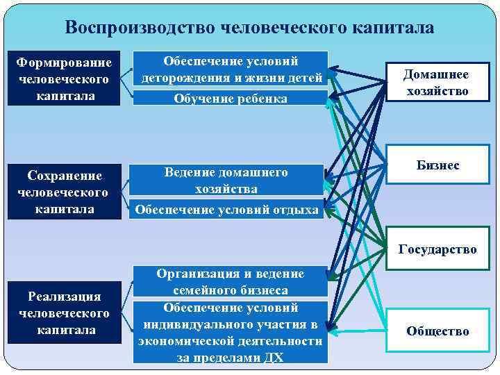 Воспроизводство человеческого капитала Формирование человеческого капитала Сохранение человеческого капитала Обеспечение условий деторождения и жизни