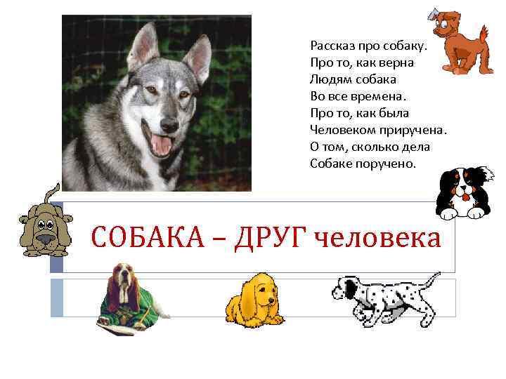 думаю, философские рассказы картинки к ним про собаку меньше зазоры, тем