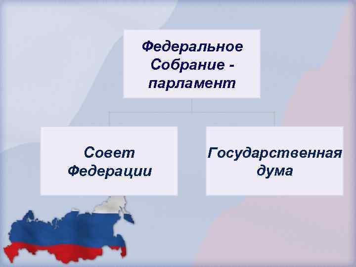 Федеральное Собрание парламент Совет Федерации Государственная дума