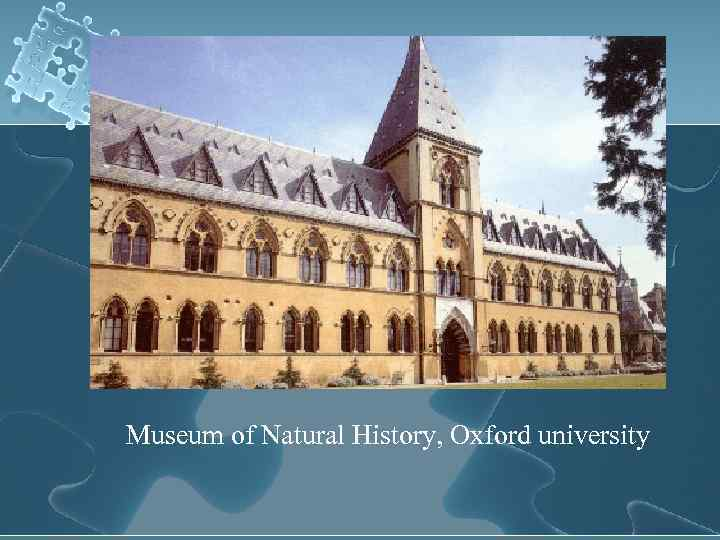 Museum of Natural History, Oxford university