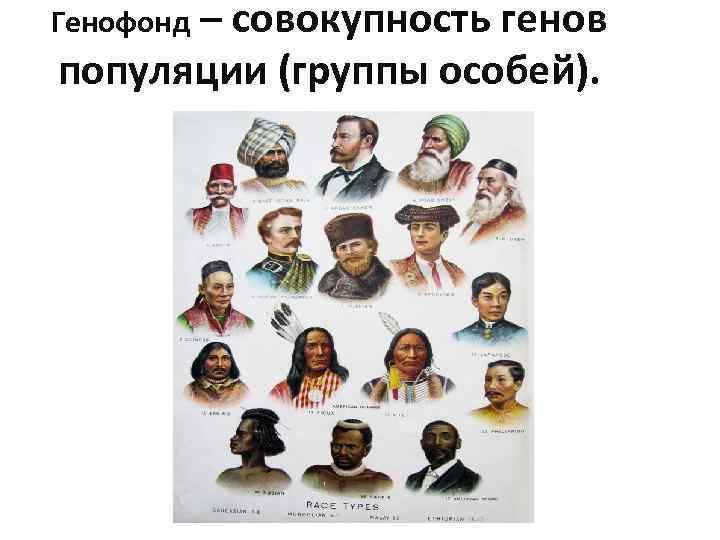 Генофонд – совокупность генов популяции (группы особей).