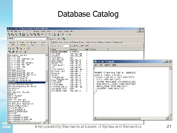 Database Catalog Interoperability Standards at Levels of Syntax and Semantics 21