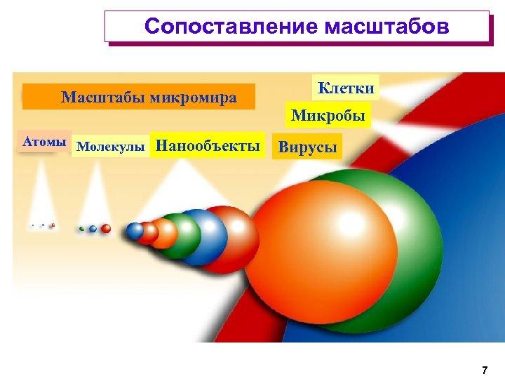 Сопоставление масштабов Масштабы микромира Атомы Молекулы Нанообъекты Клетки Микробы Вирусы 7