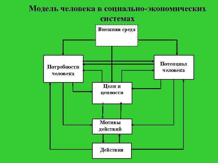 Модель человека в социально-экономических системах Внешняя среда Потенциал человека Потребности человека Цели и ценности