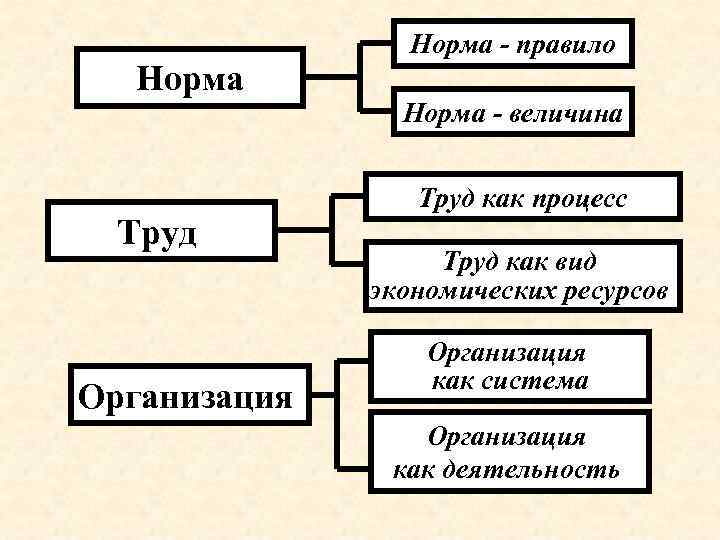 Норма Труд Организация Норма - правило Норма - величина Труд как процесс Труд как
