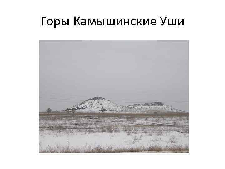 Горы Камышинские Уши