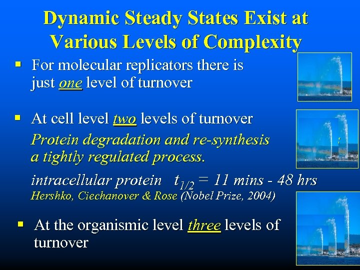 Dynamic Steady States Exist at Various Levels of Complexity § For molecular replicators there
