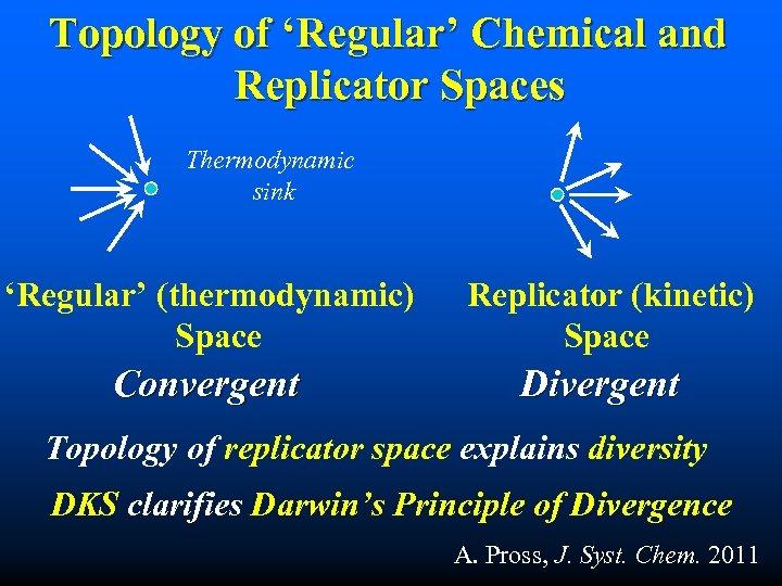 Topology of 'Regular' Chemical and Replicator Spaces Thermodynamic sink 'Regular' (thermodynamic) Space Convergent Replicator