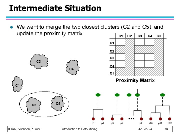 Intermediate Situation l We want to merge the two closest clusters (C 2 and