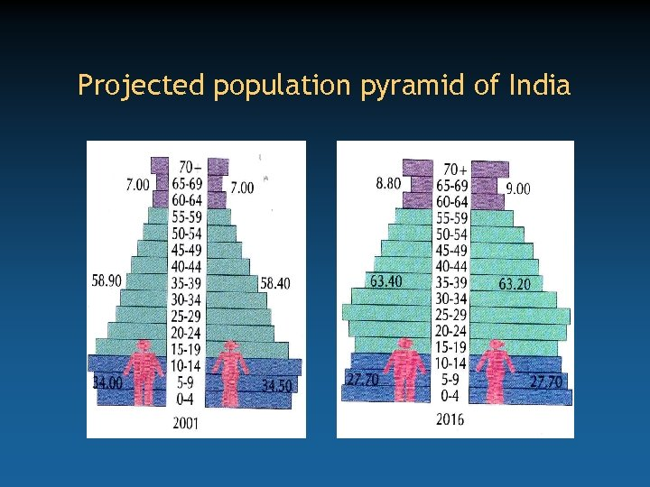 Projected population pyramid of India