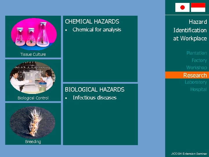 CHEMICAL HAZARDS • Chemical for analysis Hazard Identification at Workplace Plantation Tissue Culture Factory