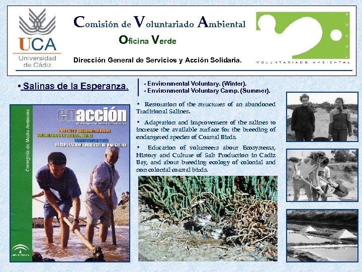 Comisión de Voluntariado Ambiental Oficina Verde Dirección General de Servicios y Acción Solidaria. •