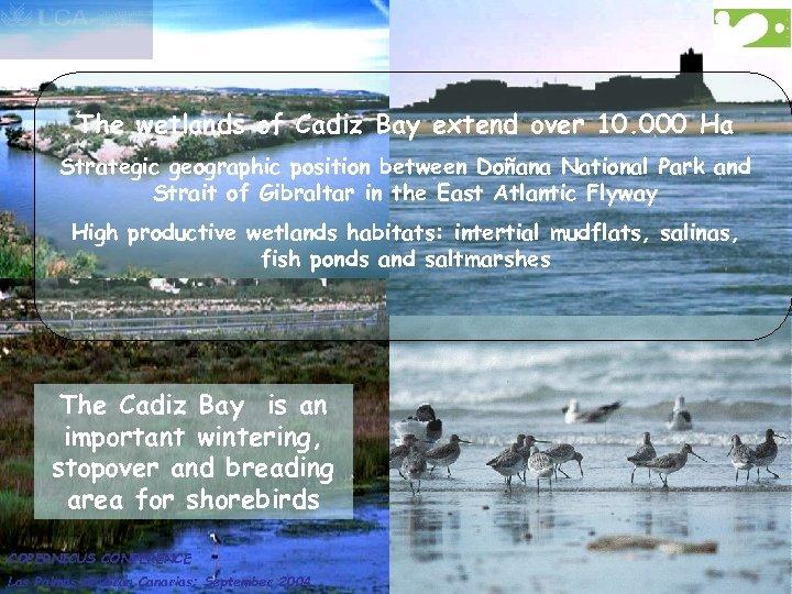 The wetlands of Cadiz Bay extend over 10. 000 Ha Strategic geographic position between