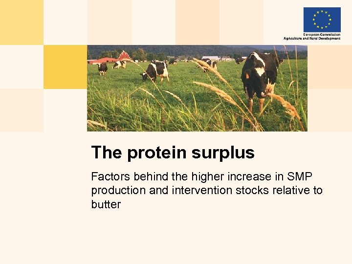 The protein surplus Factors behind the higher increase in SMP production and intervention stocks