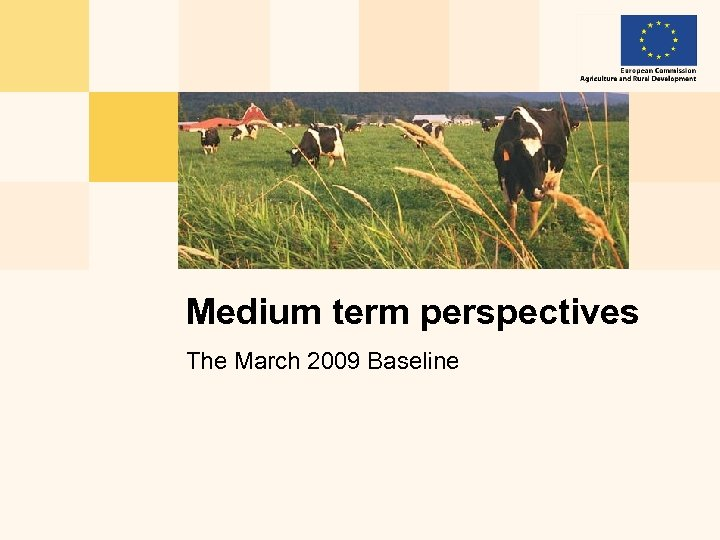 Medium term perspectives The March 2009 Baseline
