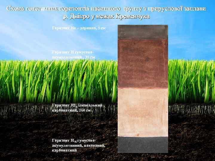 Схема генетичних горизонтів насипного ґрунту з прируслової заплави р. Дніпро у межах Кременчука Горизонт