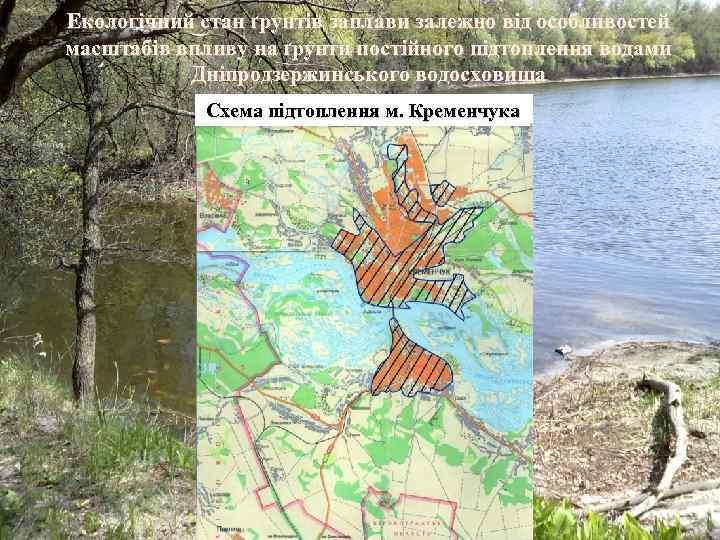 Екологічний стан ґрунтів заплави залежно від особливостей масштабів впливу на ґрунти постійного підтоплення водами