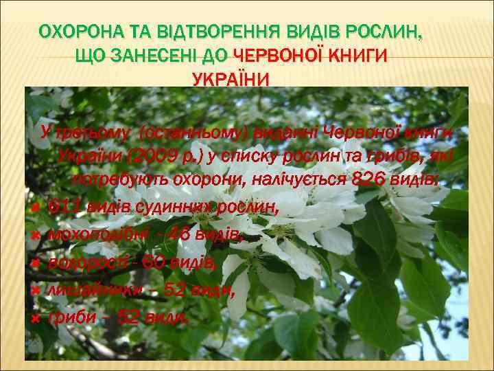 ОХОРОНА ТА ВІДТВОРЕННЯ ВИДІВ РОСЛИН, ЩО ЗАНЕСЕНІ ДО ЧЕРВОНОЇ КНИГИ УКРАЇНИ У третьому (останньому)