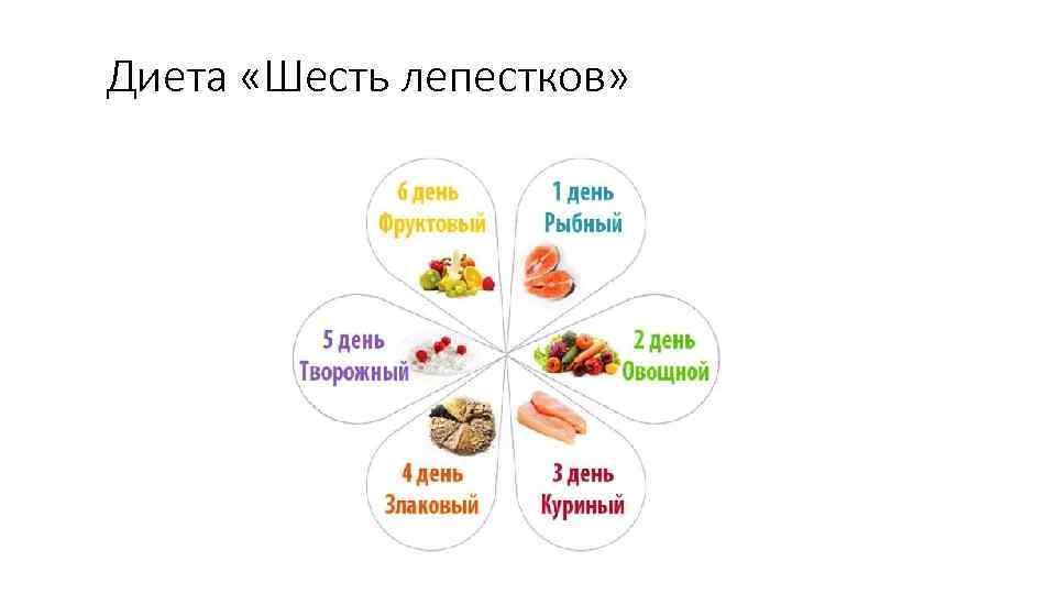 Диета Н 6 Лепестков. Диета 6 лепестков: подробное меню питания на каждый день, отзывы и результаты