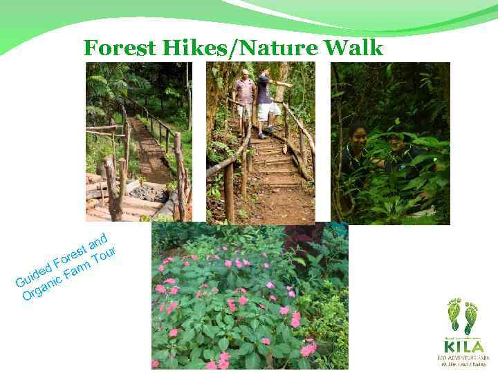 Forest Hikes/Nature Walk d an r t res Tou o d F arm e
