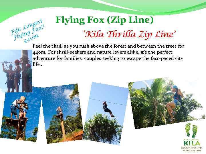 Flying Fox (Zip Line) st nge !! o is L Fox Fij ing 'Kila