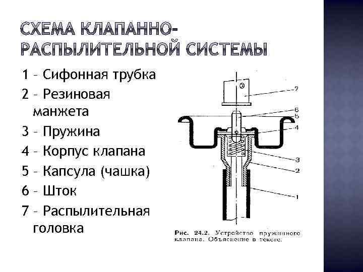 1 – Сифонная трубка 2 – Резиновая манжета 3 – Пружина 4 – Корпус