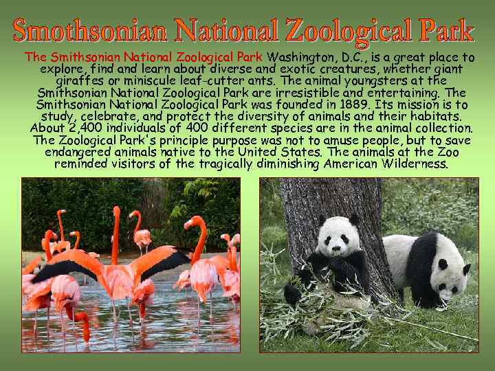 The Smithsonian National Zoological Park Washington, D. C. , is a great place to