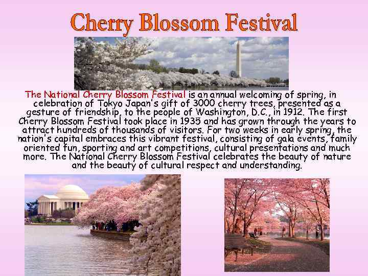 The National Cherry Blossom Festival is an annual welcoming of spring, in celebration of