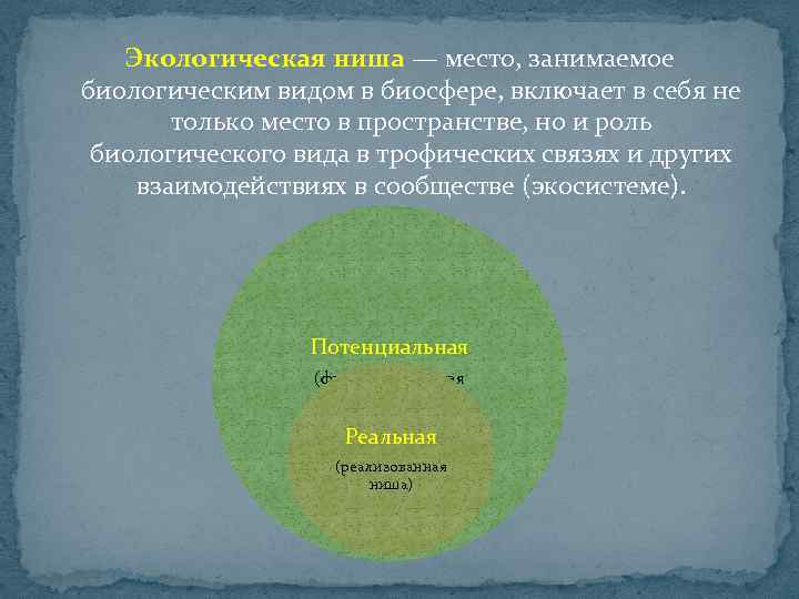Экологическая ниша — место, занимаемое биологическим видом в биосфере, включает в себя не только