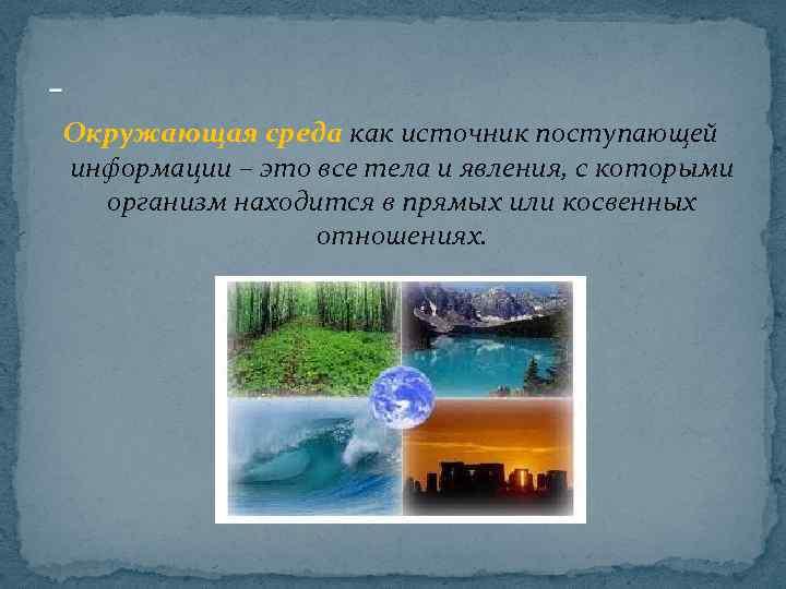 Окружающая среда как источник поступающей информации – это все тела и явления, с которыми
