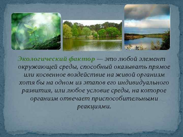 Экологический фактор — это любой элемент окружающей среды, способный оказывать прямое или косвенное воздействие
