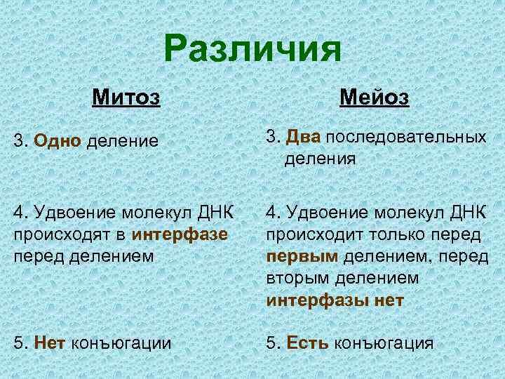 Различия Митоз Мейоз 3. Одно деление 3. Два последовательных деления 4. Удвоение молекул ДНК