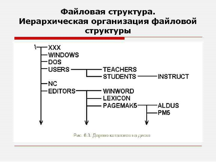 Файловая структура. Иерархическая организация файловой структуры