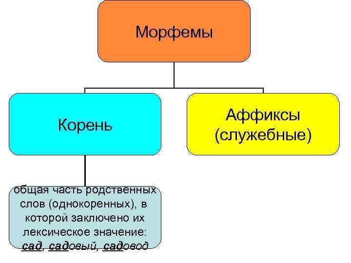 Морфемы Корень общая часть родственных слов (однокоренных), в которой заключено их лексическое значение: сад,