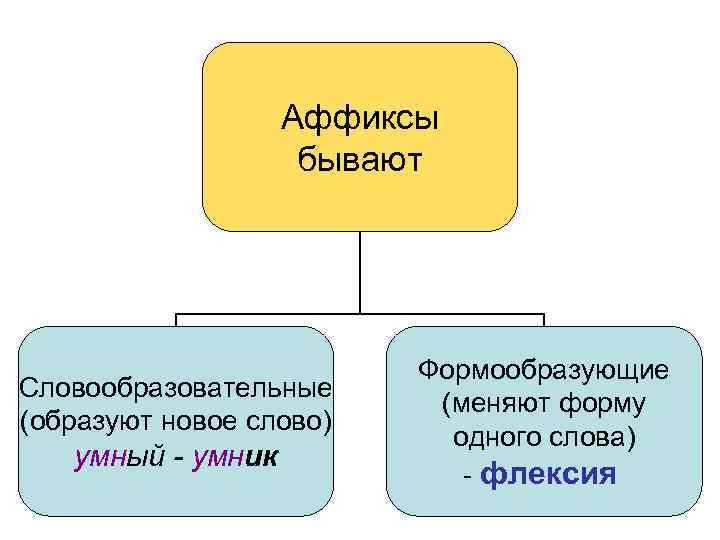 Аффиксы бывают Словообразовательные (образуют новое слово) умный - умник Формообразующие (меняют форму одного слова)