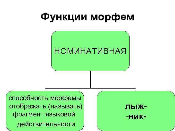 Функции морфем НОМИНАТИВНАЯ способность морфемы отображать (называть) фрагмент языковой действительности лыж-ник-