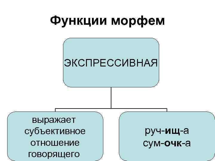 Функции морфем ЭКСПРЕССИВНАЯ выражает субъективное отношение говорящего руч-ищ-а сум-очк-а