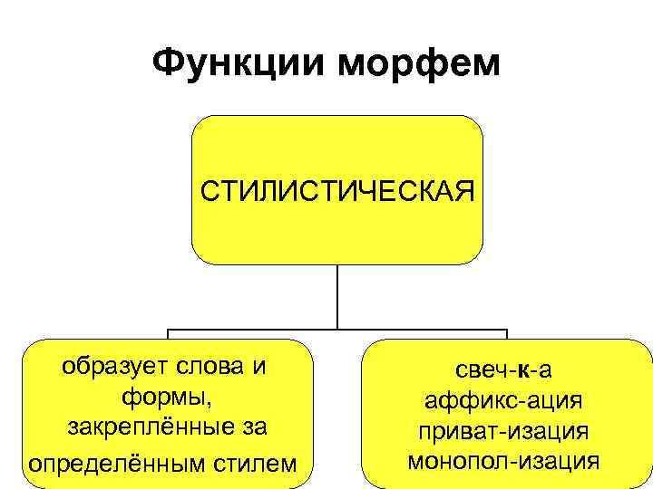 Функции морфем СТИЛИСТИЧЕСКАЯ образует слова и формы, закреплённые за определённым стилем свеч-к-а аффикс-ация приват-изация
