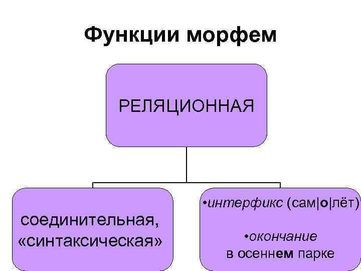 Функции морфем РЕЛЯЦИОННАЯ соединительная, «синтаксическая» • интерфикс (сам|о|лёт) • окончание в осеннем парке