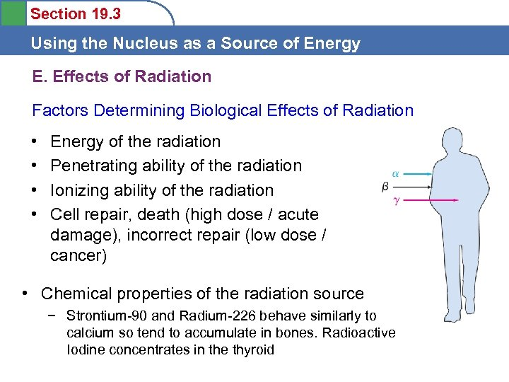 Section 19. 3 Using the Nucleus as a Source of Energy E. Effects of