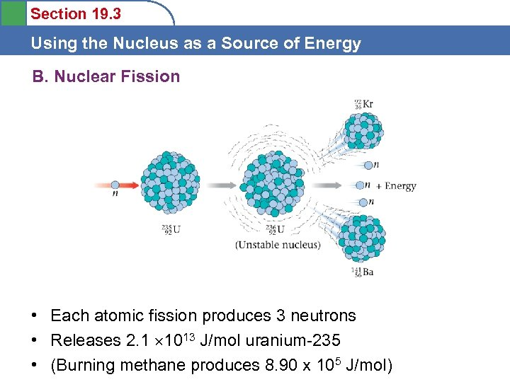 Section 19. 3 Using the Nucleus as a Source of Energy B. Nuclear Fission