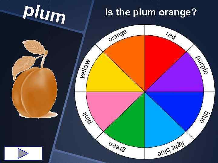 plum Is the plum orange?