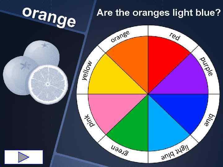orang e Are the oranges light blue?
